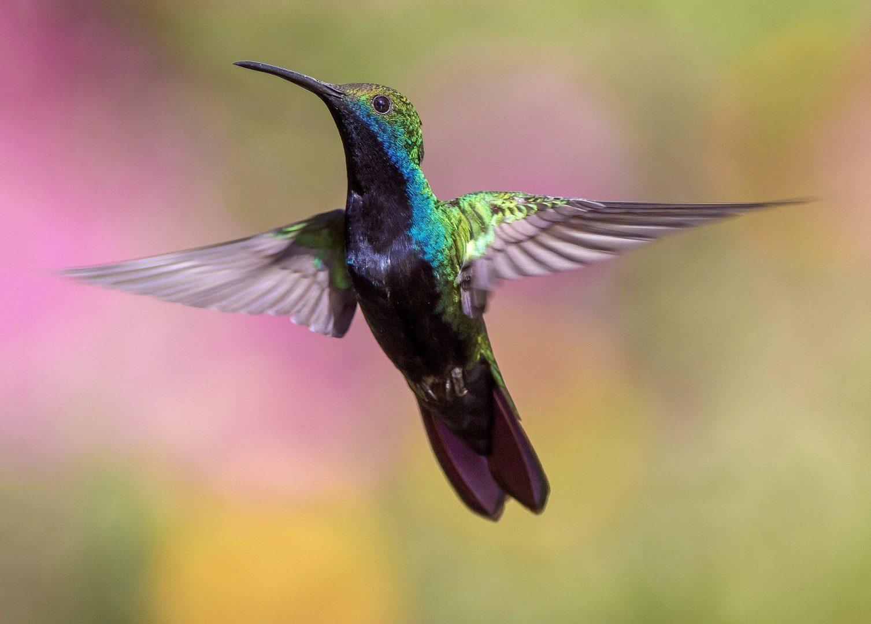 3 novos usos de PR e assessoria de imprensa para sua empresa voar e ganhar mercado